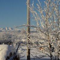 Зимушка-зима :: Валентина
