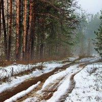 Зимушки весенние ручьи... :: Лесо-Вед (Баранов)