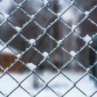 морозный плен :: Тася Тыжфотографиня