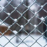 морозный плен :: Photo Tasja