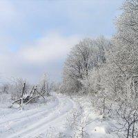 По дороге на дачу. Зима пришла :: Александр Резуненко