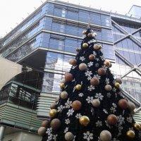 Предверие Нового года 2015-ть. :: Жанна Викторовна