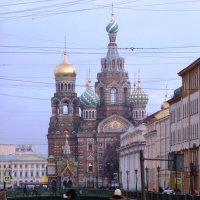 а солнца мало в декабре... :: Марина Харченкова