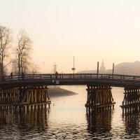 Дымка. Мост. :: Елена Троян