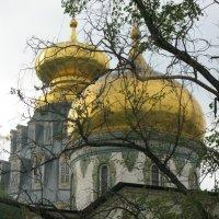 Купола. Новый Иерусалим. :: Larisa