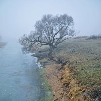 Утро туманное... :: Александр Бойко