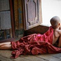 Monk in Myanmar :: Alexandr Safronov