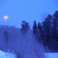 Круглолицая луна неспешно шествует по небу :: Наталья Пендюк Пендюк