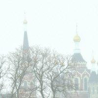Храм в станице Манычской :: Игорь Попов