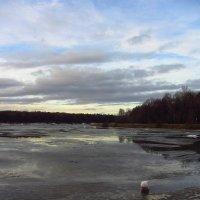 IMG_7784 - Типичный декабрь! Нашли чем удивить! :: Андрей Лукьянов