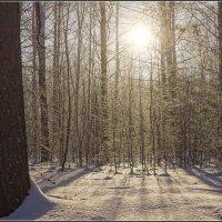 10.День зимнего солнцестояния---01 :: Владимир Холодный