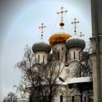 Новодевичий :: Борис Соловьев
