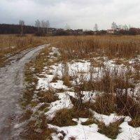 IMG_7922 - Еще в полях белеет снег :: Андрей Лукьянов