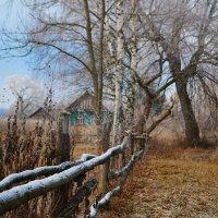 вот она деревня! :: ольга кривашеева