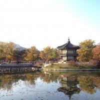 Seoul :: Olga Ionina G