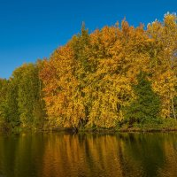 Водный осенний пейзаж :: Александр