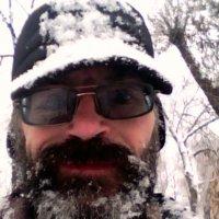 Вот и снег , господа :: Алексей Соколов