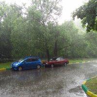 Img_8140 - Нормальный летний дождь :: Андрей Лукьянов