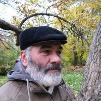 Осень жизни :: Александр Знаменский