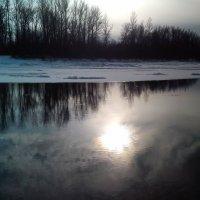 Зимнее солнце :: оксана