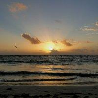 Рассвет Карибского моря. :: Елена Шемякина
