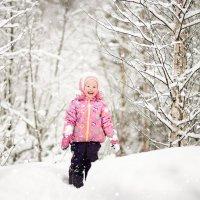 зимний лес... :: Сильвия Михеева
