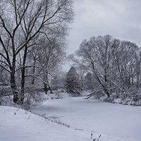 Зимнее спокойствие... :: марк