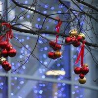 Новогоднее настроение :: Вера Моисеева