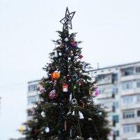елочка :: Наталия Алексеевна