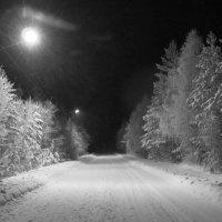 Ночь..фонари.. :: Галина Полина