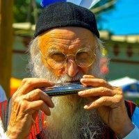 Я играю на гармошке :: Владимир Максимов