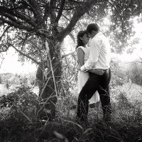 Wedding. Love wood :: Pavel Skvortsov