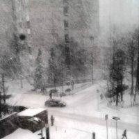 Снег за окном :: Татьяна [Sumtime]