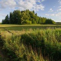 Еще не скошены все травы :: Валентин Котляров
