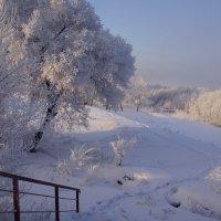 Дорожка в зиму :: Наталия Григорьева