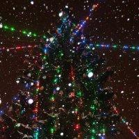 Великие Луки: елкё, гирлянды, снежинки... :: Владимир Павлов