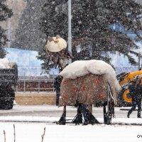 чудеса под Новый год :: Олег Лукьянов