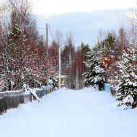 зима за околицей :: Елена Третьякова