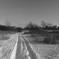 IMG_8380 нц - Дорогой Деда Мороза :: Андрей Лукьянов