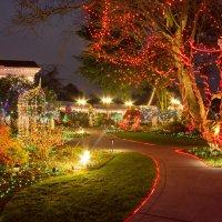 Новогоднее волшебство в парке :: Victoria Ditkovsky