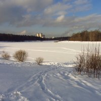 Img_3832 - февраль-2013 :: Андрей Лукьянов