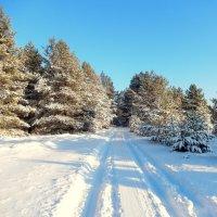 Ждём Деда Мороза !!!!! :: Hаталья Беклова