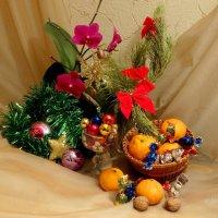 Орхидея к Новому Году... :: Тамара (st.tamara)