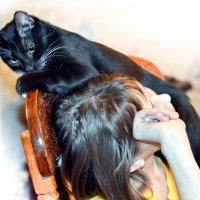 Моя хозяйка самая лучшая. :: Анна Никонорова