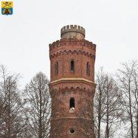 Зарайск. Старая водонапорная башня :: Алексей Шаповалов Стерх