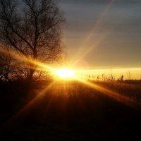 рассвет на (в) Украине... :: Elenn S