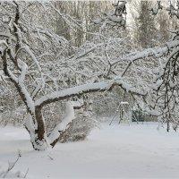 Приход зимы :: Eino Pessi