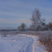 По тропинке шла Зима... :: Михаил (Skipper A.M.)