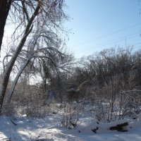 Зима в начале декабря...2 :: Тамара (st.tamara)