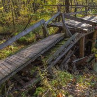 Лесной пейзаж. Старый заброшенный мост. :: Александр